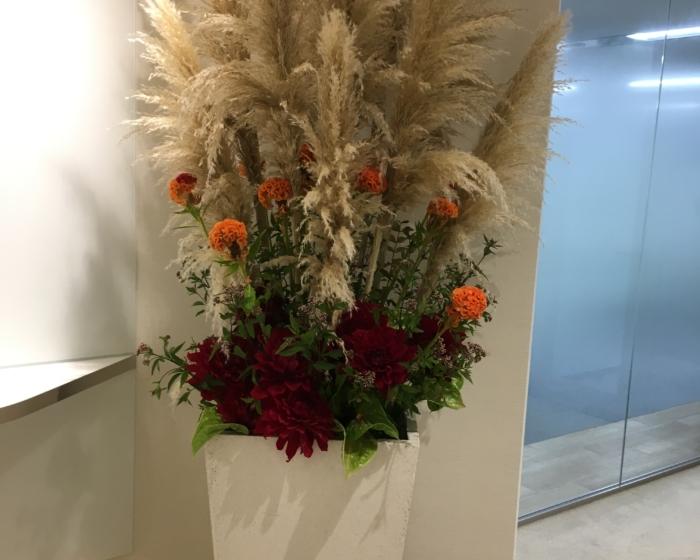 エントランスのお花