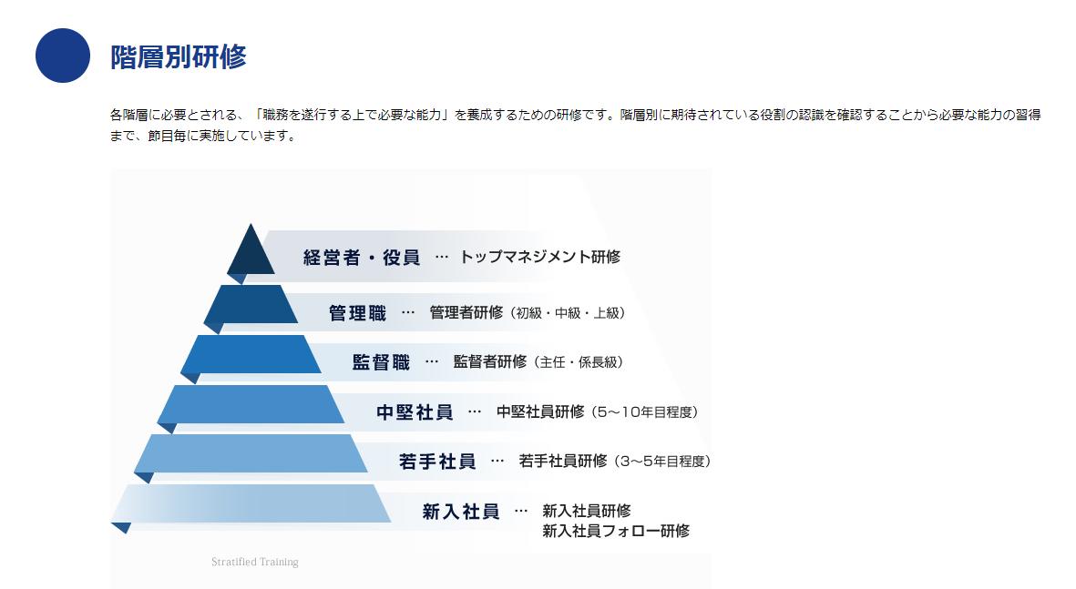 階層別研修グラフ